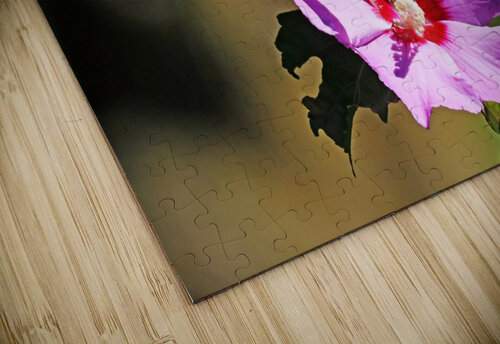 Monarch And Rose Of Sharon jigsaw puzzle