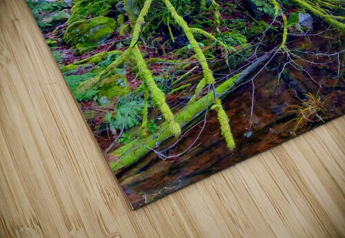 MOSSY BRANCHES jigsaw puzzle