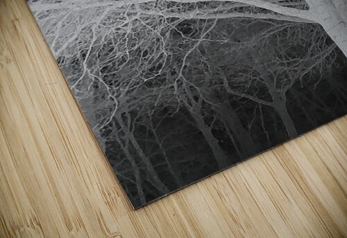 Ghost Trees jigsaw puzzle