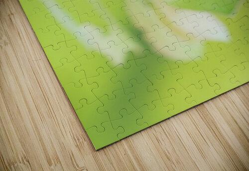 an Daphnis Nerii jigsaw puzzle