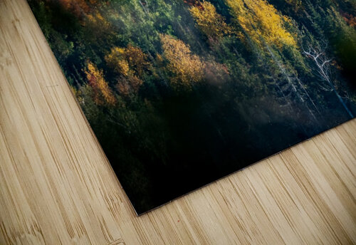 autumn abstract view jigsaw puzzle