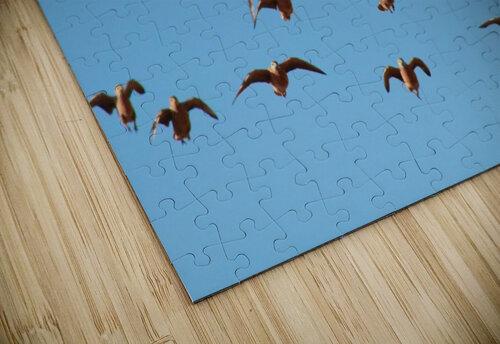 AdriaanPrinsloo 4488 jigsaw puzzle