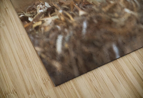 Simplicity of Nature jigsaw puzzle