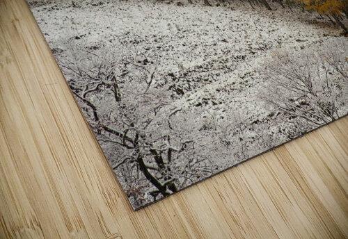 October Snow Canaan Valley WVa jigsaw puzzle