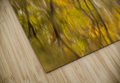 Autumnal swirls reflections jigsaw puzzle