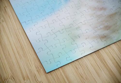 catshadow jigsaw puzzle