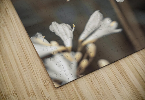 African Lilies jigsaw puzzle