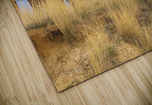 Little Bighorn Ponies jigsaw puzzle