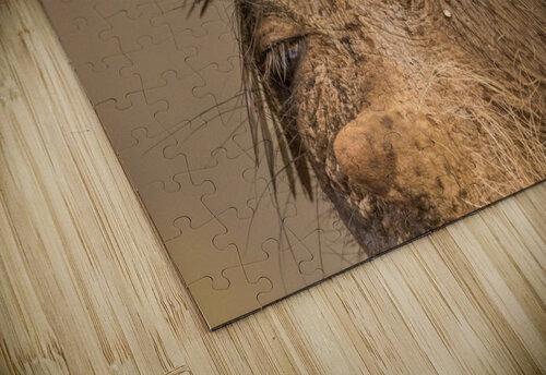 Hideaway by Jaco Marx  jigsaw puzzle
