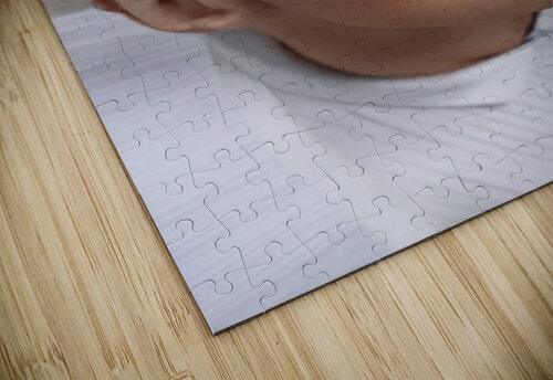 InnerSpace II jigsaw puzzle