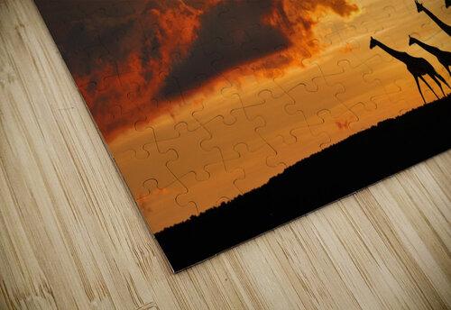 Five Giraffes jigsaw puzzle