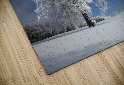 White Windbuche in Black Forest jigsaw puzzle