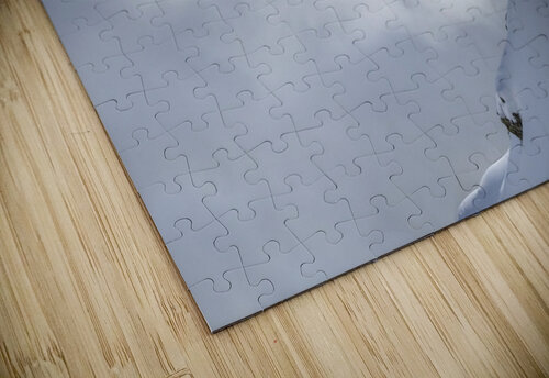 Lincoln Loop jigsaw puzzle