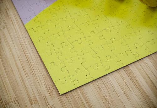 food macaroon photography jigsaw puzzle