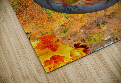 Abstract - Autumn II jigsaw puzzle