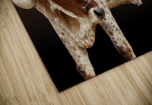 Longhorn Steer Profile 7x5 jigsaw puzzle