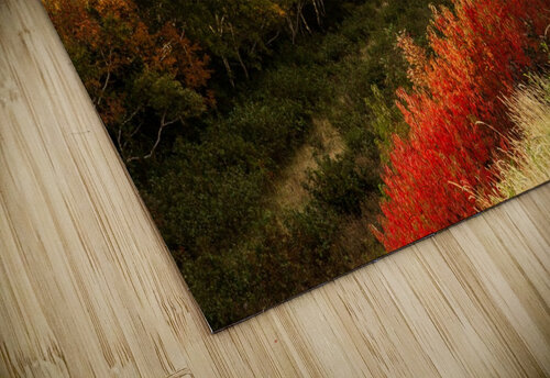 Autumn on the Cabot Trail jigsaw puzzle