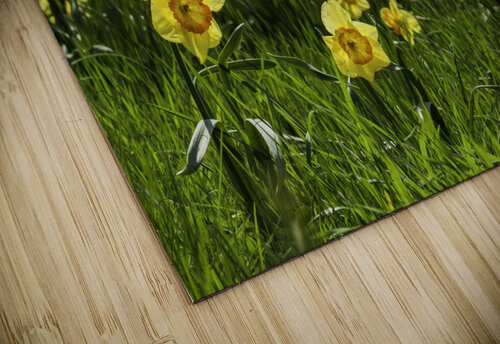 Flowers on the Hills jigsaw puzzle