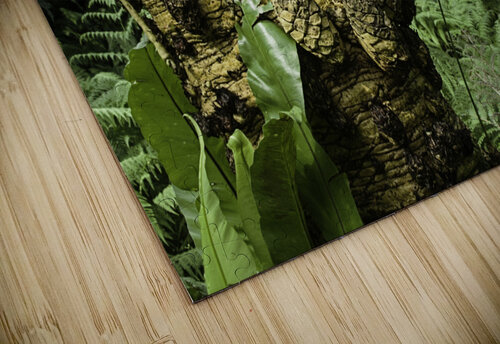 Trees Textures jigsaw puzzle