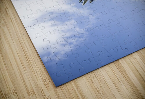 Fly By jigsaw puzzle