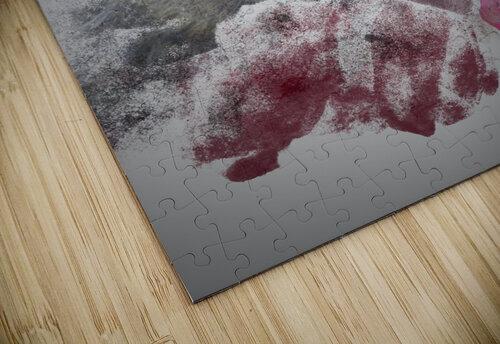 Singe jigsaw puzzle
