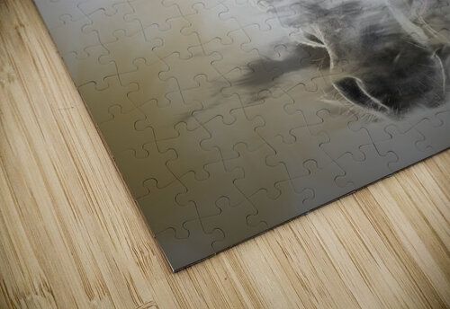 Cheval jigsaw puzzle
