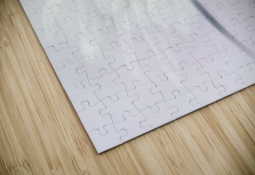 Anemone blanda jigsaw puzzle