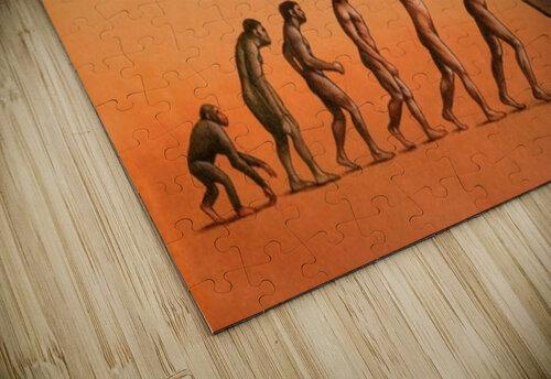 evolution jigsaw puzzle