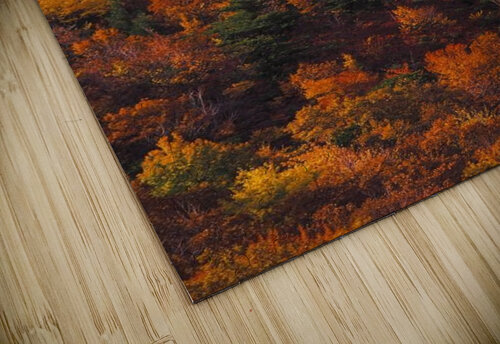 landscape_2_0441 jigsaw puzzle