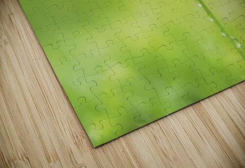 landscape_2_0846 jigsaw puzzle