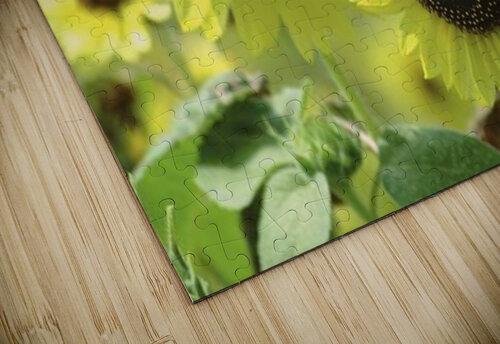landscape_2_0976 jigsaw puzzle