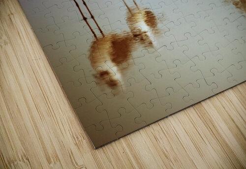 Birds on the Beach jigsaw puzzle
