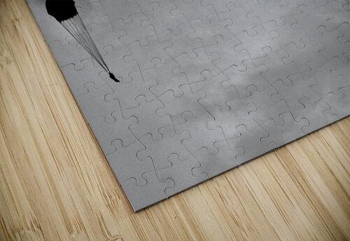 GO, GO, GO! jigsaw puzzle