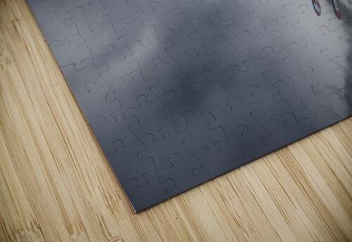 WingWalkers jigsaw puzzle