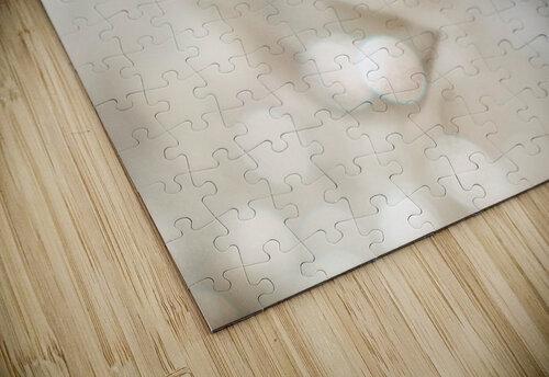 Hi Lite jigsaw puzzle