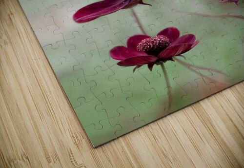 Cosmos sway jigsaw puzzle
