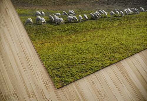 pastoral jigsaw puzzle