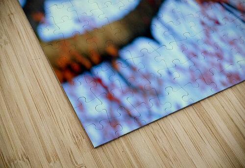 heirinji jigsaw puzzle