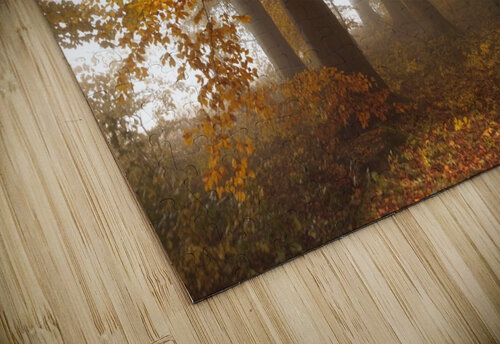 Edge of the woods jigsaw puzzle