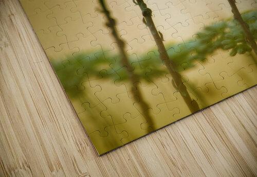 Cleopatra jigsaw puzzle