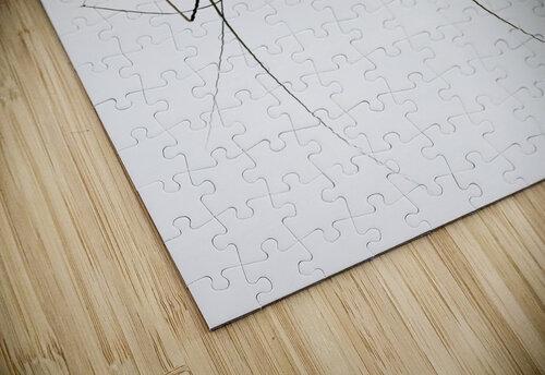 Zensation jigsaw puzzle