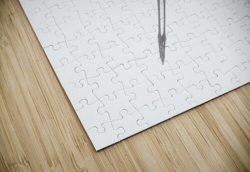 Fly jigsaw puzzle