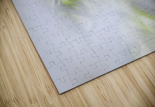 White Spring jigsaw puzzle