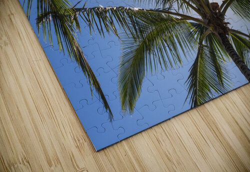 Coconut Palms backlit by the sunlight in a blue sky; Poipu, Kauai, Hawaii, United States of America jigsaw puzzle
