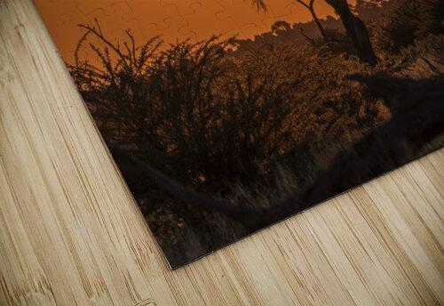 Silhouette of acacia tree at orange sunset; Botswana jigsaw puzzle