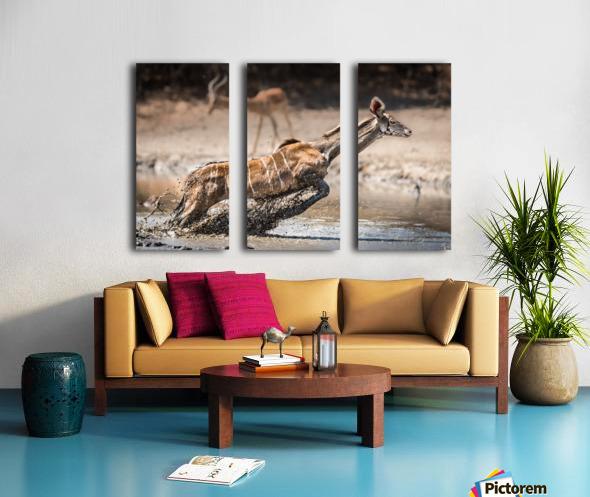 Kudu jump Split Canvas print