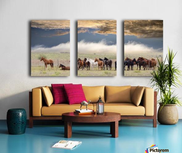 Horses Split Canvas print