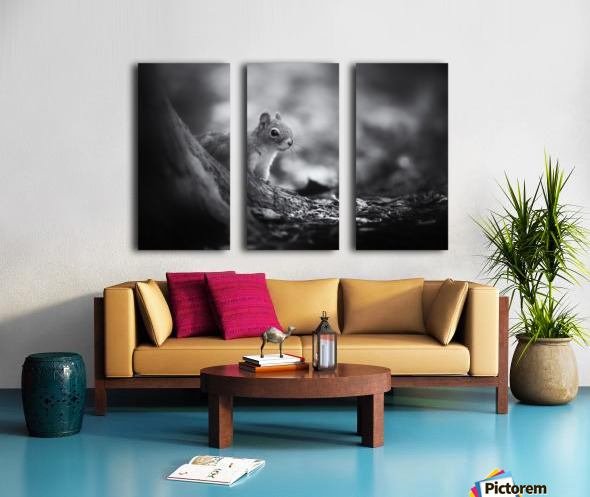 In the woods Split Canvas print