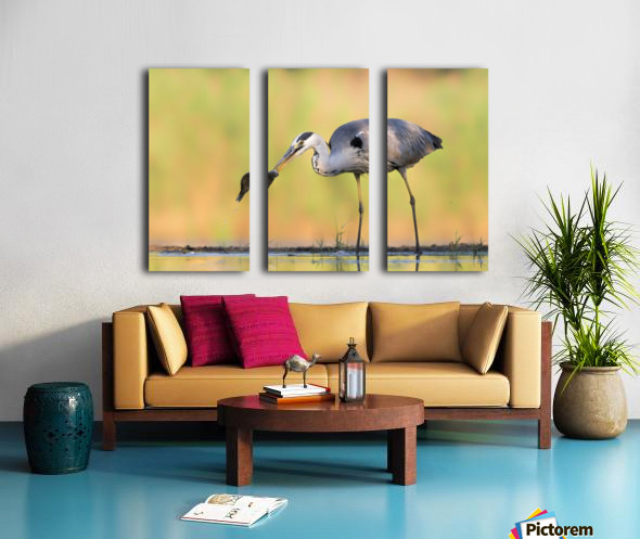 Morning Catch Split Canvas print