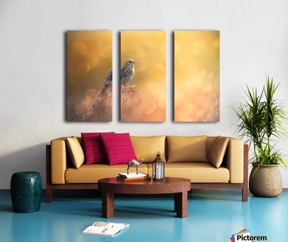 Lost in Bokeh Split Canvas print